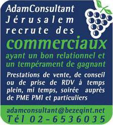 Adam Consultant Regie Recrute des Commerciaux