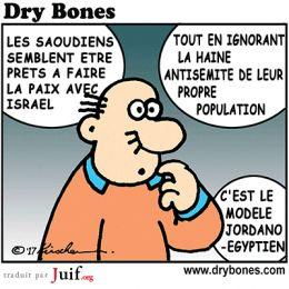Et en plus, il n'y a rien à y voir… - Dry Bones